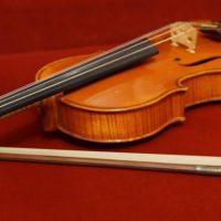 Viola-stringed-instrument